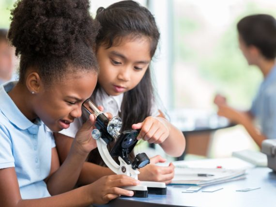 NGSS Summer Institutes this summer