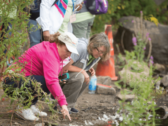 Four-day environmental education professional development program slated for Aug. 20-23
