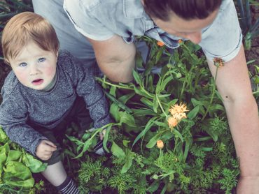 Supporting Big Ideas: Funding for School Sustainability Projects Announced